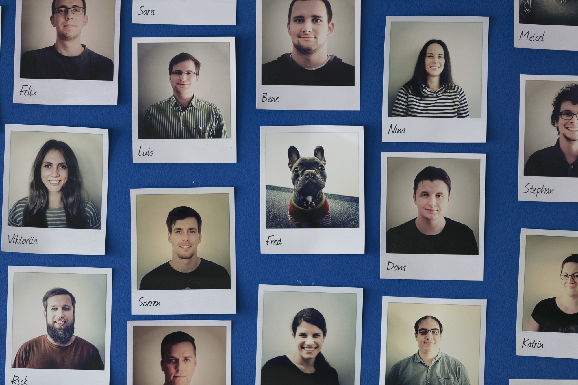 Blick Auf Unsere Mitarbeiterwand