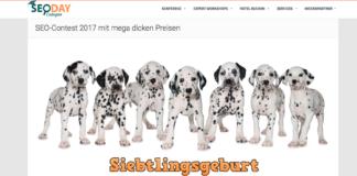 SIEBTLINGSGEBURT SEO Contest